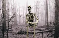Winter Is Coming (Sasha's Lab) Tags: flickrfriday bones skeleton cold winter revoltech action figure jfigure