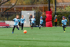 BU8-Red_20191102-090047_31 (sam_duray) Tags: 2012 201920 bu8red ccsc ccsc12 chicagocity conor murphy soccer club fall