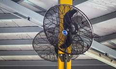 Outdoor fans (Theen ...) Tags: 2018 square blue safetypark hongkong theen ceiling big shatin lumix black outdoor fans yellow mainland netal