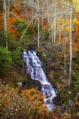 Fall Blue Ridge Parkway 2019 11 (rschnaible) Tags: fall autumn color colorful outdoor landscape woods forest north carolina blue ridge parkway mountains the south water waterfall