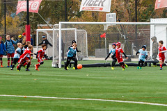 BU8-Red_20191102-090002_29 (sam_duray) Tags: 2012 201920 bu8red ccsc ccsc12 chicagocity conor murphy soccer club fall