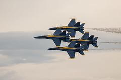 Blue Angels (explored 09/06/2019) (Lynn Tweedie) Tags: wheelerdowntownairport 7dmarkii missouri plane bird wing sky blueangels canon tail sigma150600mmf563dgoshsm clouds