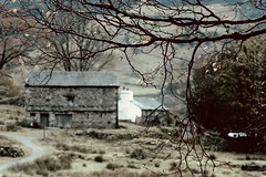 Lakeland barn....and Lakeland weather! (tonguedevil) Tags: landscape view outdoor outside countryside autumn nature valley barn cottage farming fields trees rain raining raindrops footpath hillside colour light shadows cumbria lakedistrict greatlangdale