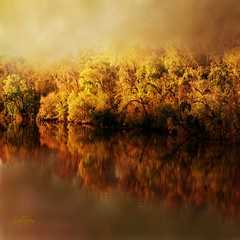 Fall at the River....(Explored) (Patlees) Tags: yadkinriver nc autumn textured dt explored frontpage 22