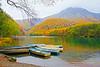 静けさ (たつ) Tags: 日本 japan 北陸 上高地 大正池 autumn 楓葉 紅葉 canon