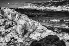 Un message venu d'ailleurs... / A message from elsewhere... (vedebe) Tags: noiretblanc netb nb bw monochrome bouteilles bouteille bottle bottles mer merméditerranée seascape plage eau ecologie environnement abandonné paysages société