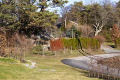 Stangerholmen 1.5, Onsøy, Norway (Knut-Arve Simonsen) Tags: stangerholmen skjæløy lervik onsøy frederikstad norge норвегия norway noriega norwegen norvegia norvège नॉर्वे 挪威 ノルウェー நோர்வே νορβηγία sydnorge sørnorge østlandet oslofjorden østfold viken norden scandinavia скандинавия э́стфолл фре́дрикстад гло́мма ослофьорд