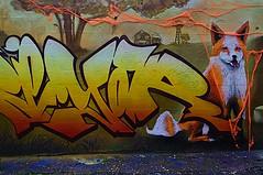 Le renard des Trois couronnes (Edgard.V) Tags: paris parigi street art urban urbano arte callejero mural graffiti renard fox raposa volpe