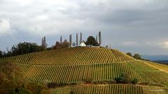 Häuser auf Hügeln_9.4, Schererkogel (Feinblick) Tags: österreich steiermark südsteiermark reben hügel schererkogel schererkogl kogl häuseraufhügeln