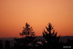 _DSC5884 (Adriano Clari) Tags: alba sunrise mattina morning colori colours rosso red adriano clari