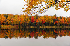 Reflecting On Autumns Past (Cole Chase Photography) Tags: autumn fall upperpeninsula michigan reflections fallcolors