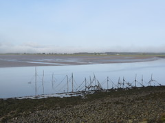 Photo of Wigtown Bay-2