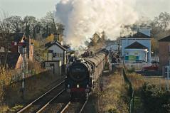 Photo of Seasonal Steam