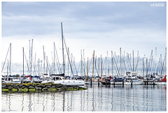 Boats (red stilletto) Tags: geelong bellarinepeninsula geelongwaterfront boat boats marina famousflickrfive fuji fujixt20