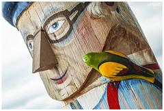 Wish I Was A Woodpecker (red stilletto) Tags: geelong bellarinepeninsula geelongwaterfront bollard bollards bird birds famousflickrfive fuji fujixt20 carousel
