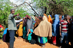 Registration (FAOemergencies) Tags: africa somalia fao farmers drought agriculture hornofafrica ruralcommunities seeddistribution inputdistribution emergencies europeanunion