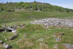 Nether Largie Mid Cairn (D R Swift) Tags: prehistoric bronzeage cairn burialmound netherlargiemidcairn kilmartinglen kilmartin argyle scotland