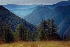 Alpe Salei, Ticino (Rita Eberle-Wessner) Tags: schweiz switzerland tessin ticino vergeletto alpesalei berge mountains gebirge alpen alps comologno onsernone valonsernone onsernonetal lepontinischealpen landschaft landscape bäume trees wald forest woods