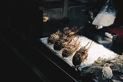 _MG_7531 (waychen_c) Tags: 大同區 taiwan taipei tw 台湾 taipeicity 臺北市 urban food night cityscape nightscape nightmarket 台灣 台北 大同 datong 台北市 ningxianightmarket datongdistrict 夜市 寧夏夜市