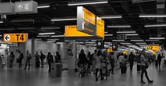 Follow Yellow Arrows (Le.Patou) Tags: challenge challengesurflickr indoor panoramic amsterdam fz1000 airport hub nb noiretblanc yellow splash bw blackandwhite people cof084babe cof084mark cof084mire cof084uki cof084dmnq cof084mari cof084unic