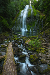 Proxy Falls (Mike Ver Sprill - Milky Way Mike) Tags: proxy falls waterfall water oregon scenice scenic beautiful nature landscape logs fallen trees surreal serene amazing large wide angle mike ver sprill michael versprill hdr nikon d810 explore rocks river stream creek
