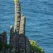 Diaclasas de disyunción columnar - Calzada de los Gigantes (Irlanda) - 05