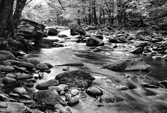 Great Smoky Mountains- Fuji XT10 18-55mm (ToddGraves2) Tags:
