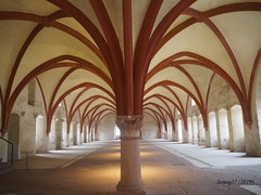 Dormitorio de monjes en el antiguo Monasterio de Eberbach. (lumog37) Tags: monasterios monastery arquitectura architecture arch arco gótico gothic