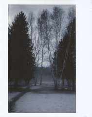 Last Winter (dreamscapesxx) Tags: instant instax fujiinstax200 fujiinstaxwide cold frozen snowy winter backyard inthecountry barrytonmi