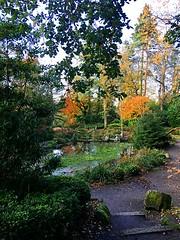Japanese garden (BrooksieC) Tags: autumn trees leaves pond lake steps garden belfast ireland northernireland sirthomasandladydixon japanesegarden