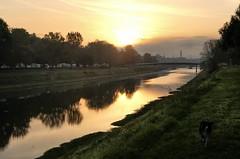 Amanecer en el Parque Cascine (Luna y Valencia) Tags: parcodellecascine firenze florencia alba sunrise amanecer