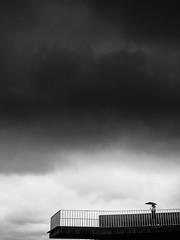Presagio (AvideCai) Tags: olympus bn blancoynegro avidecai ciudad calle vertical gente
