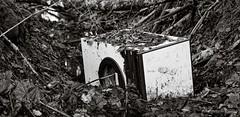 The sin of humanity (Geir Bakken) Tags: mamiya mamiyarb67 ilford ilforddelta blackandwhite bw trash forest leaf pollution vintagecamera vintage film filmisnotdead filmphotography filmcamera 120film 120 mediumformat analog analogphotography