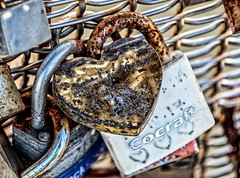 Tarnished Love (Andy J Newman) Tags: color rustic bristol colorefex colour corroded d500 harbour harbourside lovck love nikon padlock england unitedkingdom