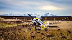 Super Cub (ak_wink) Tags: alaska supercub airtransportation duckshack westerncookinlet generalaviation