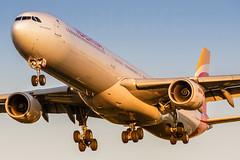 Iberia EC-KZI 19-10-2019 (Enda Burke) Tags: avgeek aviation airplane airport av8 aero arrival airbus a340 a340600 airbusa340 airbusa340600 canon canon7dmk2 cockpit egll lhr london londonheathrow heathrow travel iberia eckzi landing landingear
