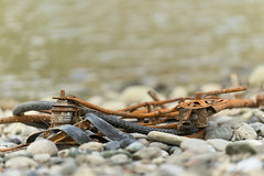 The river is not a dumpster!!!   :-( (Ernst_P.) Tags: 135mm aut f20 innufer inzing österreich samyang tirol walimex schrott fahrrad rost müll waist rust