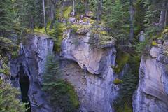 Into The Abyss (Bernie Emmons) Tags: jaspernationalpark rocks nature trees malignecanyon alberta canada waterfall