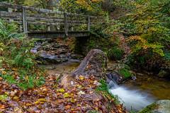 Brücke über den Gottschlägbach