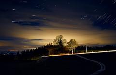 RM-2019-365-310 (markus.rohrbach) Tags: thema fotografie nachtaufnahme startrails projekt365 natur landschaft himmel pflanze baum erscheinungsform licht