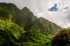 Ancient Mountains (D-Adams) Tags: maui hawaii iao valley mountain green trees sky clouds nikon landscape mountains ancient