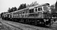 26xxx @ Boat Of Garten (A J transport) Tags: class26 diesel locomotive heritage railway trains scotland nikkon d5300 dlsr railways train track strathspey