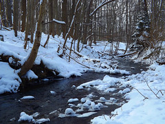 Snowy Woodland Stream (kfocean01) Tags: water stream nature tree trees snow winter woodlands woods paint painting create photoshop photomanipulation creativephotography