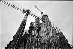 Sagrada Familia (Natasha Buzina) Tags: spain sagradafamilia architecture gaudi construction film bw blackandwhite nikonfm2 пленка испания