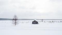 old barn / lato lumen keskellä (ikkasj) Tags: winter finland lapland landscape muonio snow