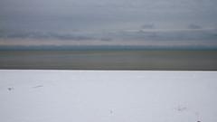 White Grey Blue (Lester Public Library) Tags: beach beaches tworiverswisconsin tworivers neshotahbeach neshotah neshotahpark snow wisconsin greatlakes lakemichigan lake water lesterpubliclibrarytworiverswisconsin readdiscoverconnectenrich