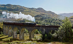 The Jacobite Steam train crossing the Glenfinnan Viaduct. Scotland. (elsa11) Tags: glenfinnan glenfinnanviaduct hogwartsexpress harrypotterbridge harrypotter westhighlandline scotsrail harrypotterfilms scottishhighlands scotland uk unitedkingdom highlands steamtrain