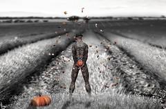 Twilight of Days (Patrick of Ireland) Tags: sl secondlife foreveryoung alphaville shakespeare fall autumn art digitalart pumpkin tattoo surreal surrealism