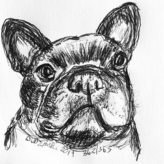 362/365 11/06/19 French Bulldog (Lainey1) Tags: frenchbulldog dog frogdog bulldog 110619 362365 362 frenchie elainedudzinski lainey1 365 doodle art sketch draw sketchoff girlzsketchy illustration abstract sketching drawing artist sketchbook graphics womensketchshit doodles doodling popart sharpies watercolor