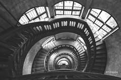 Hamburg stairs (petra.foto busy busy busy) Tags: hamburg monocrom kontorhaus alsterthor heintzehof treppenhaus stairs architektur elitegalleryaoi bestcapturesaoi aoi